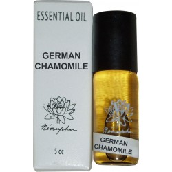 He - german chamomile